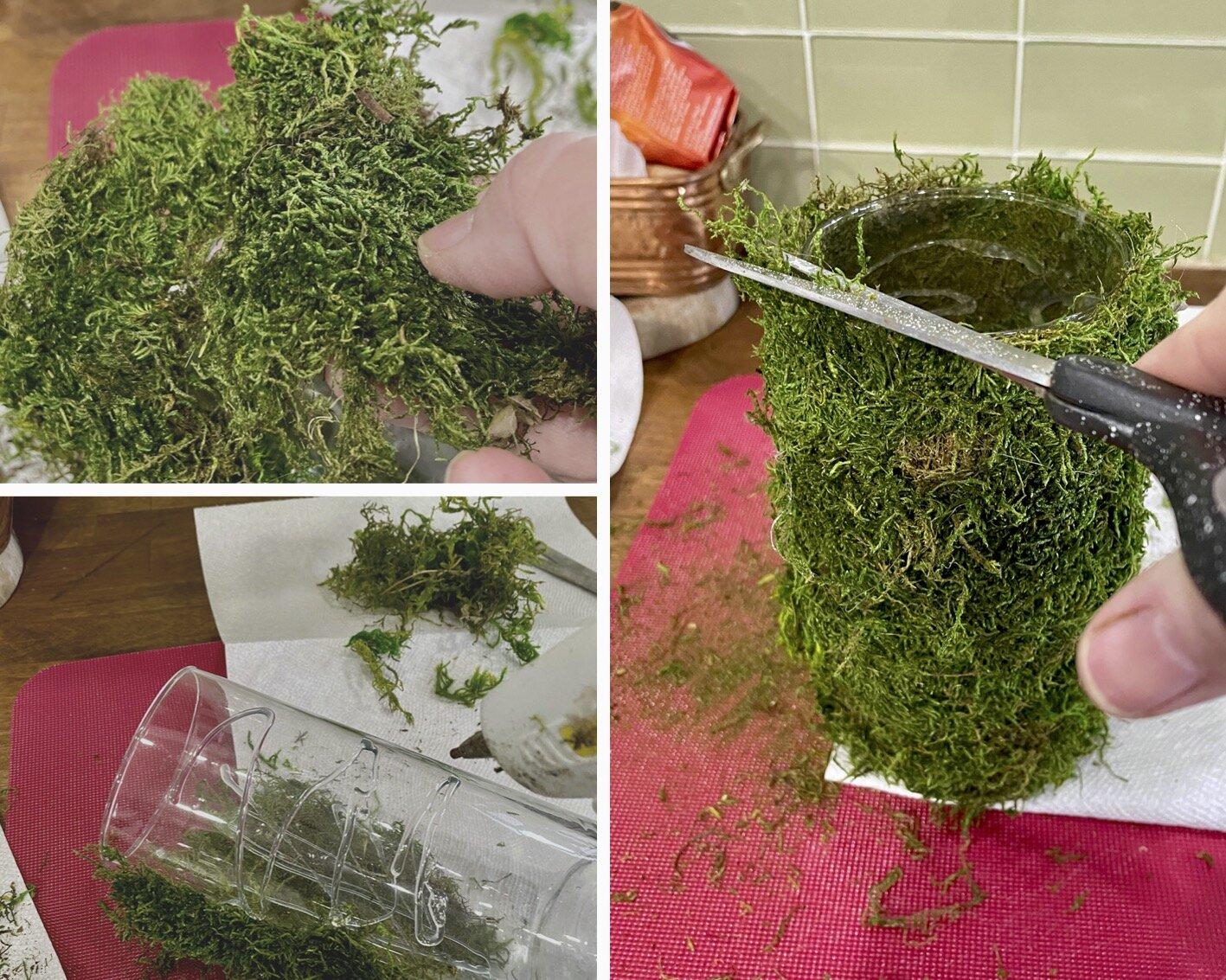 DIY Moss Covered Vase