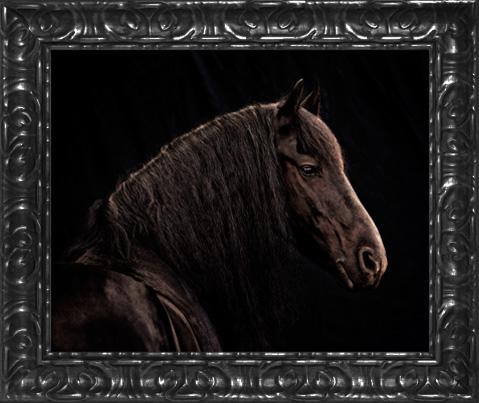Black ornate 16x20 frame