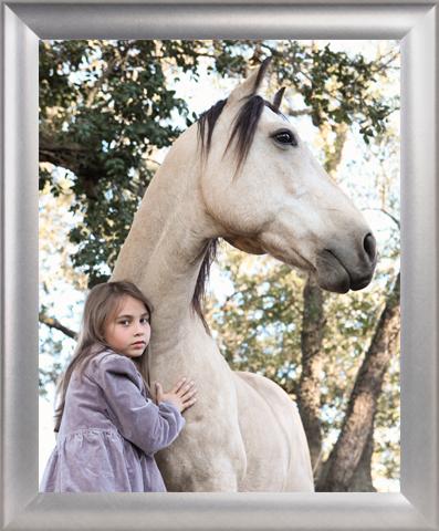 Silver 16x20 frame