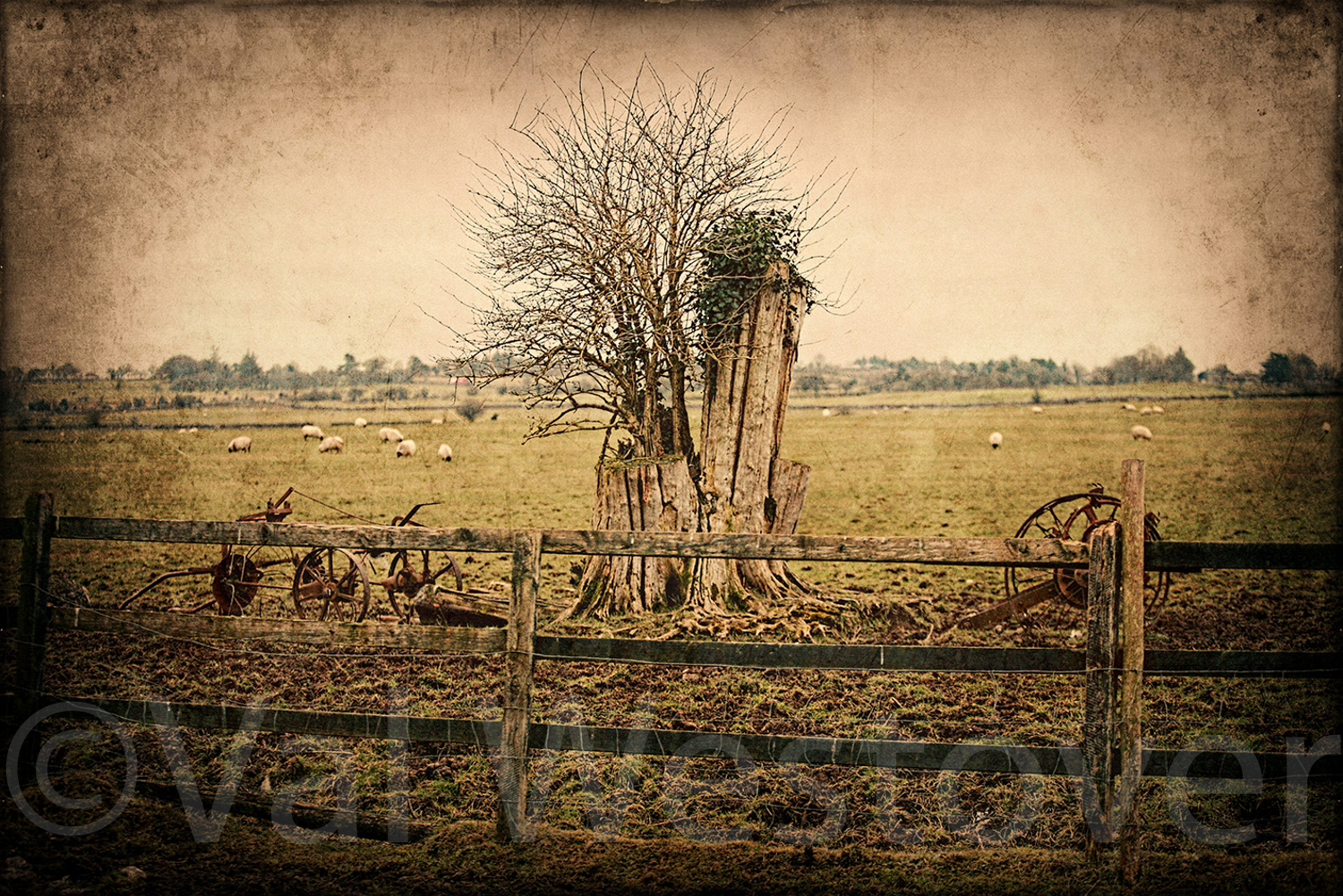 val-westover-photography--20.jpg