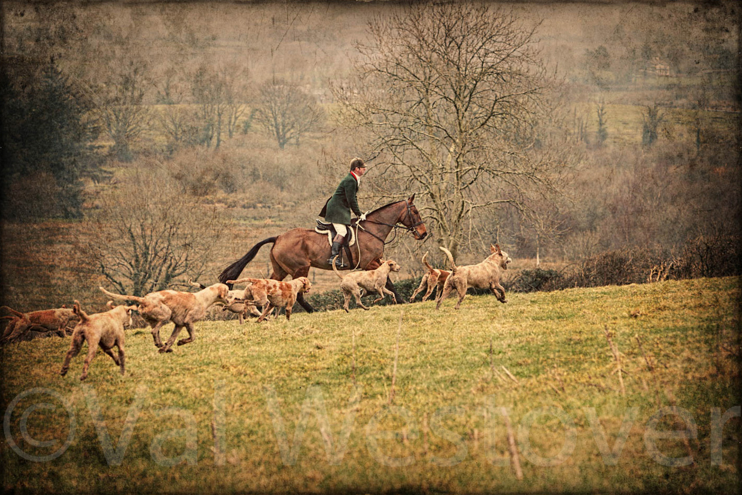 val-westover-photography--23.jpg