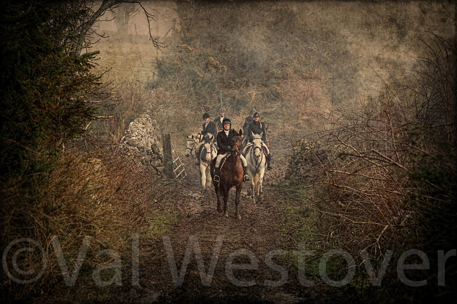 val-westover-photography--15.jpg