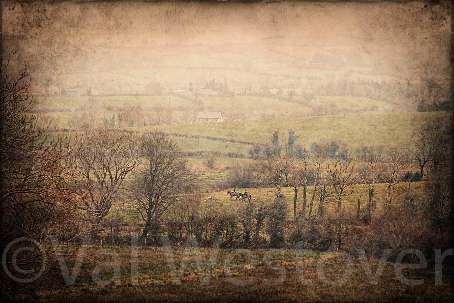 val-westover-photography--28.jpg