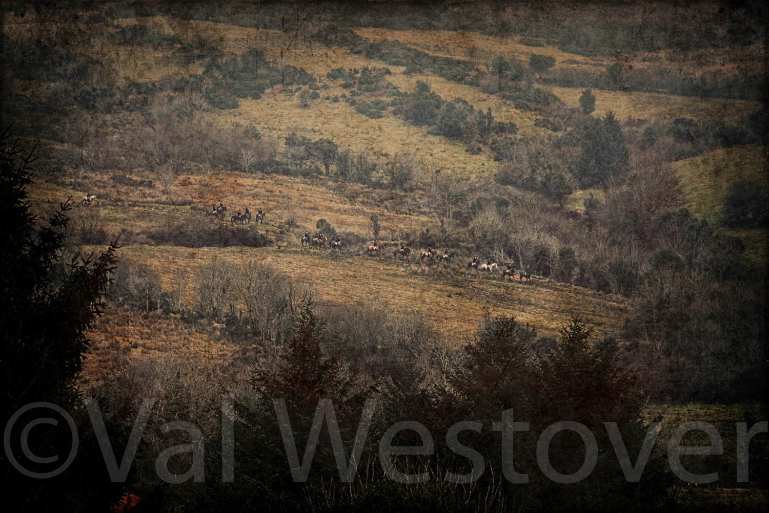 val-westover-photography--40.jpg
