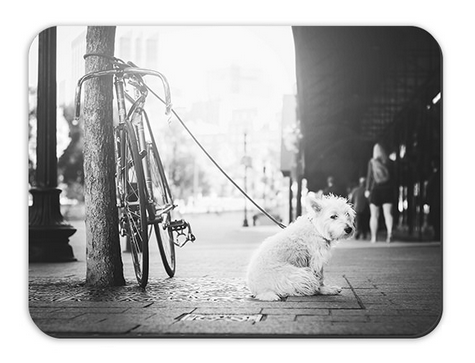 val-westover-photography-mouse-pad