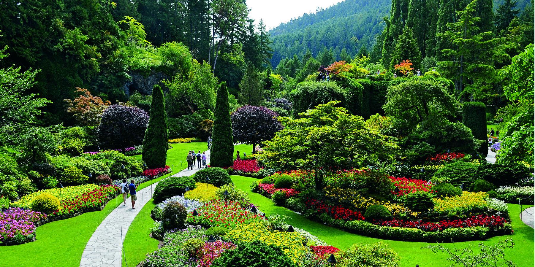 Butchart-Gardens-Sunken-Garden-Summer.jpg