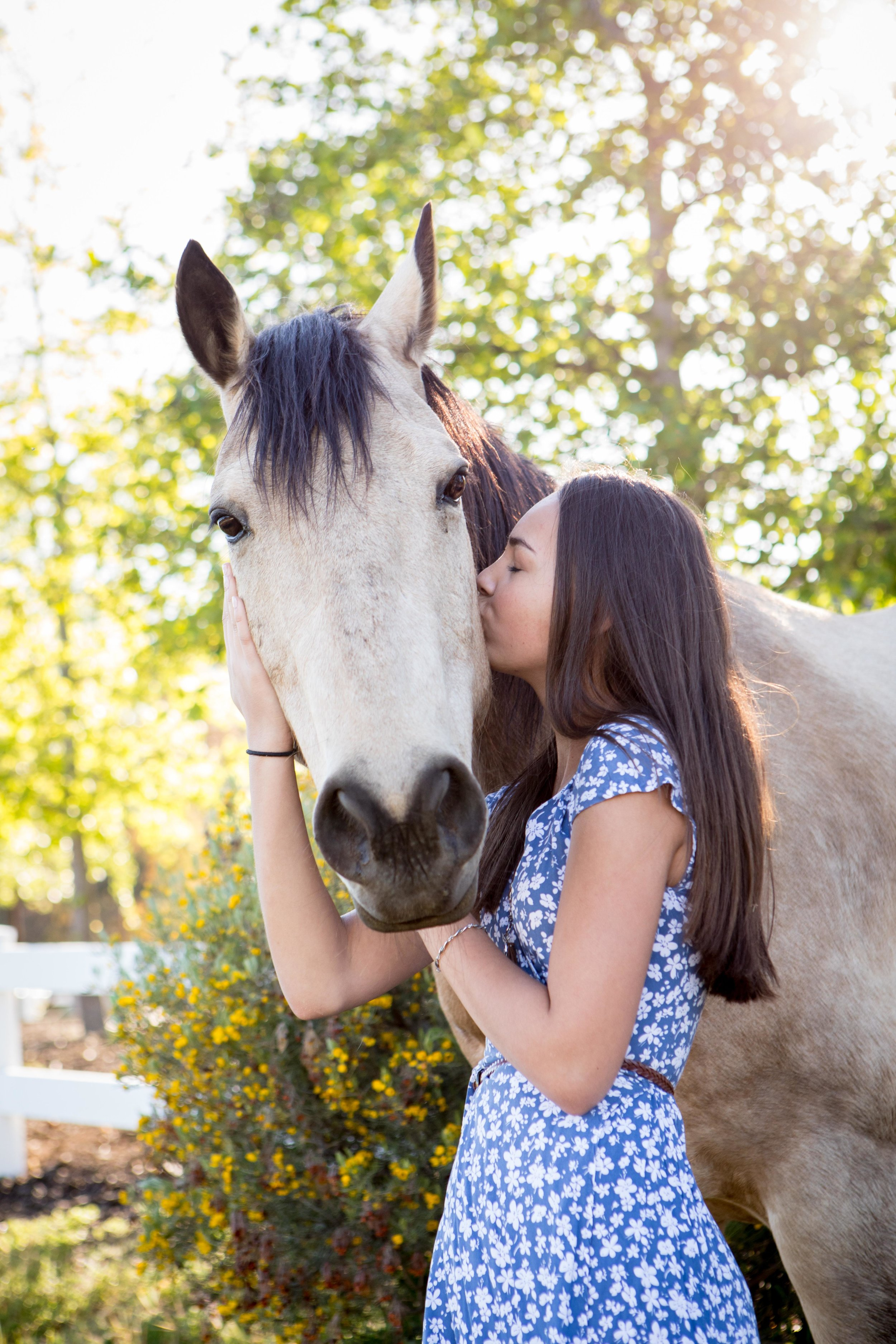 Equestrian portrait photography