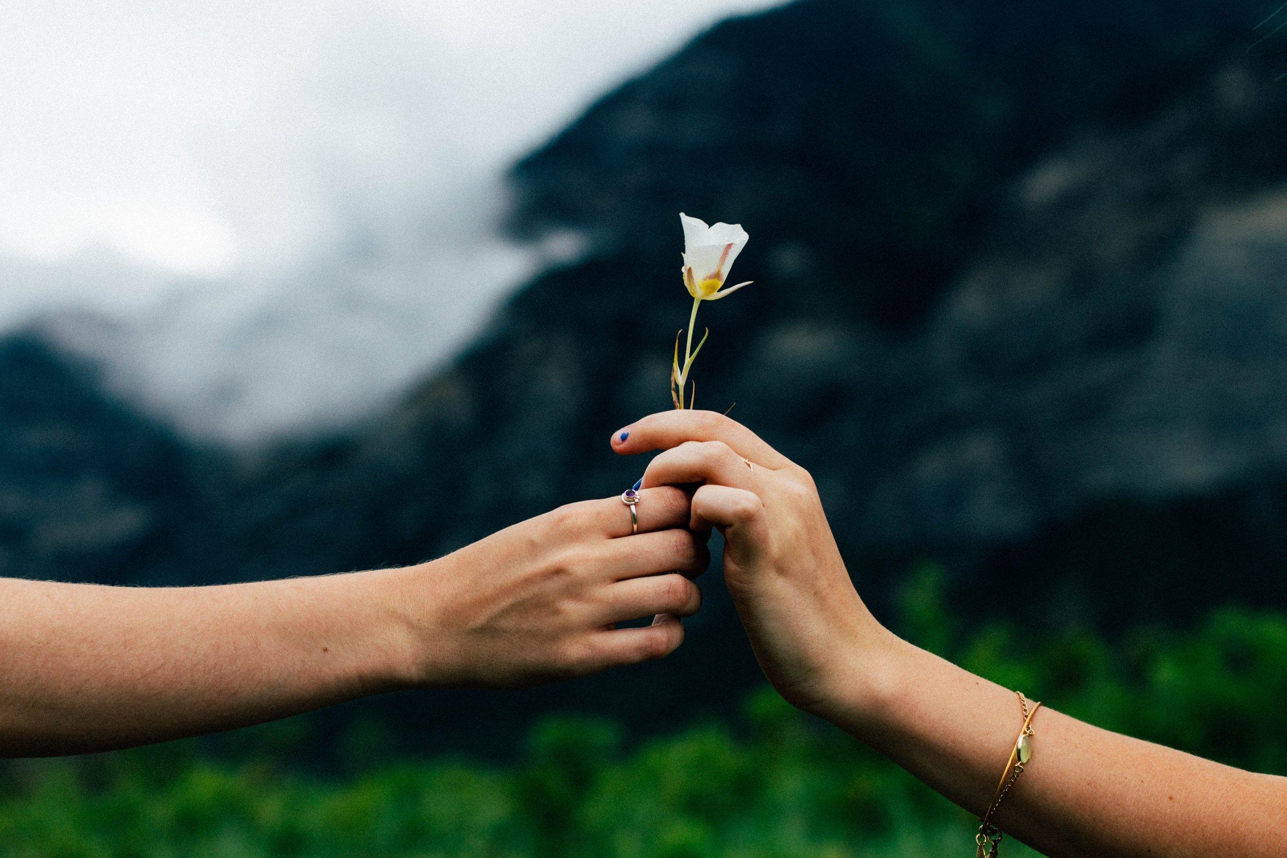 giving flower.jpg