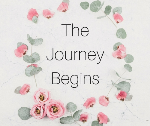 Patti The Journey Begins.jpg