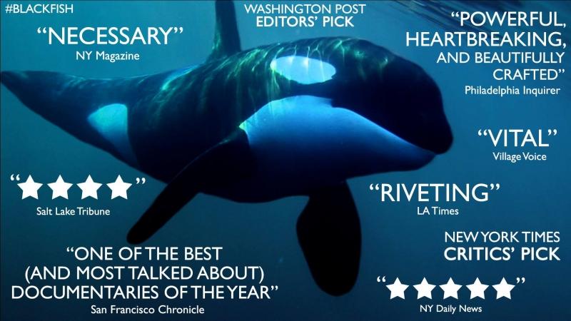blackfish-documentary
