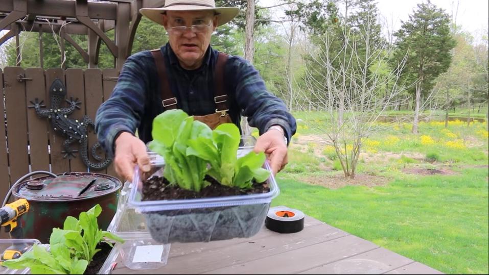 Farmer Fred's No-Cost Miniature Greenhouse!