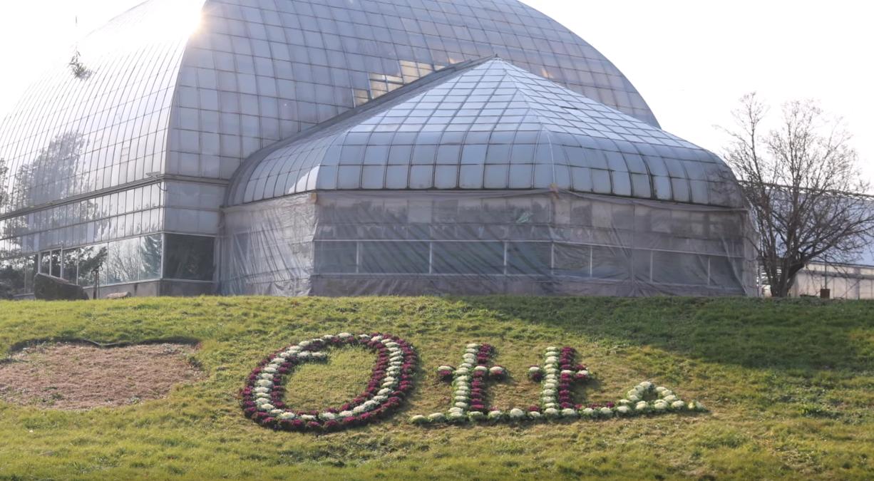 otts-greenhouse-and-nursery-schwenksville-pennsylvania-outside