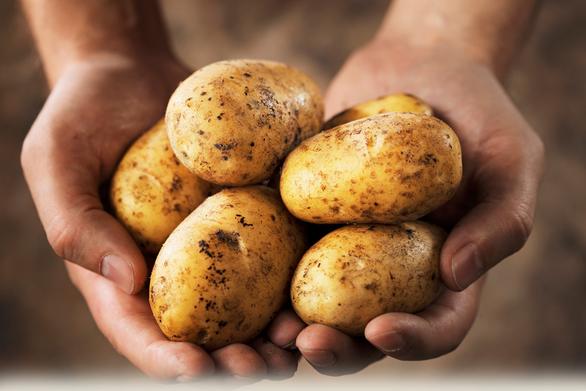 Photo courtesy of  potatoes.com