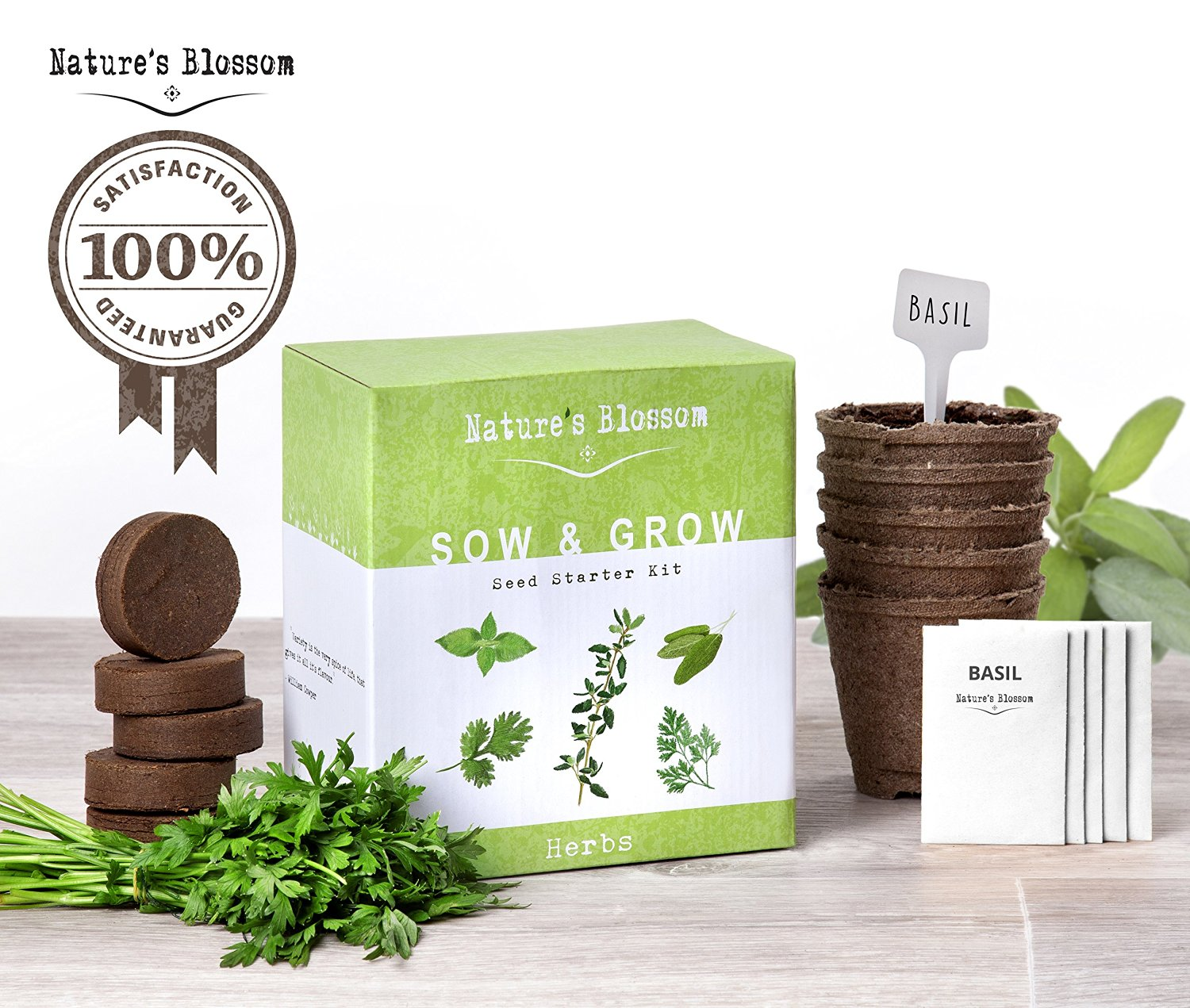 natures-blossom-sow-and-grow-seed-starter-kit-picture