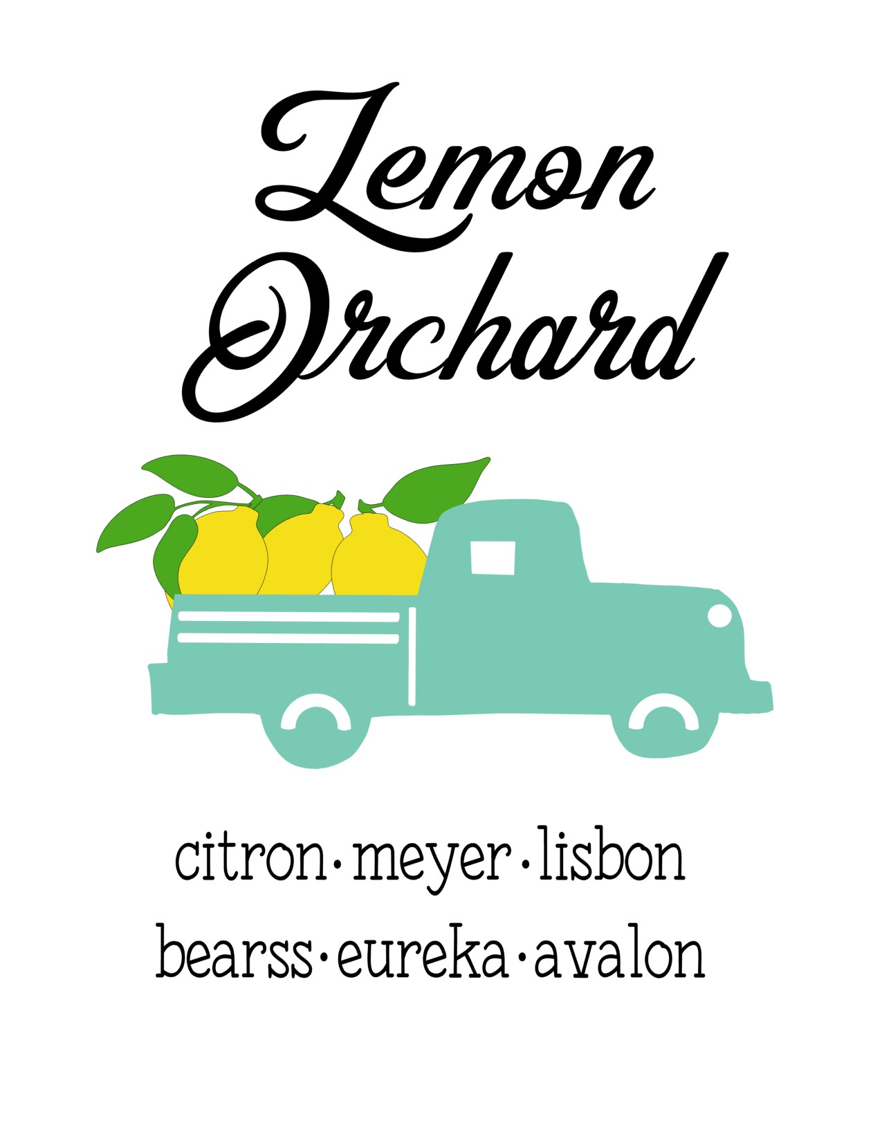 Anchored Soul Lemon Truck Aqua