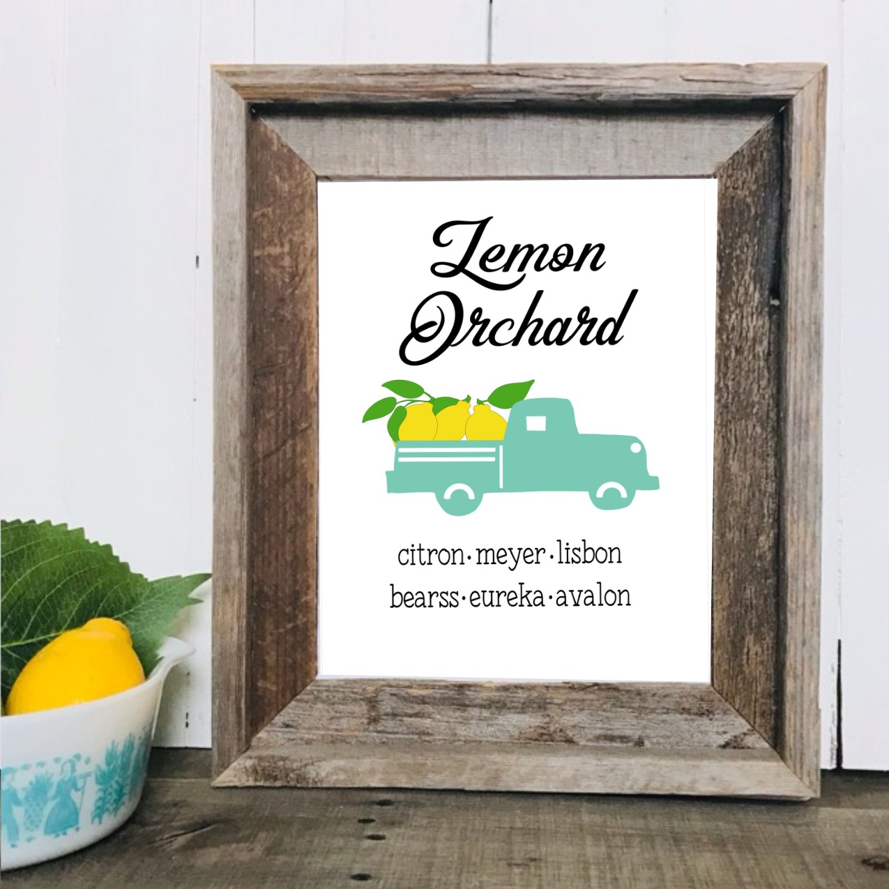 lemon orchard mock up.jpg