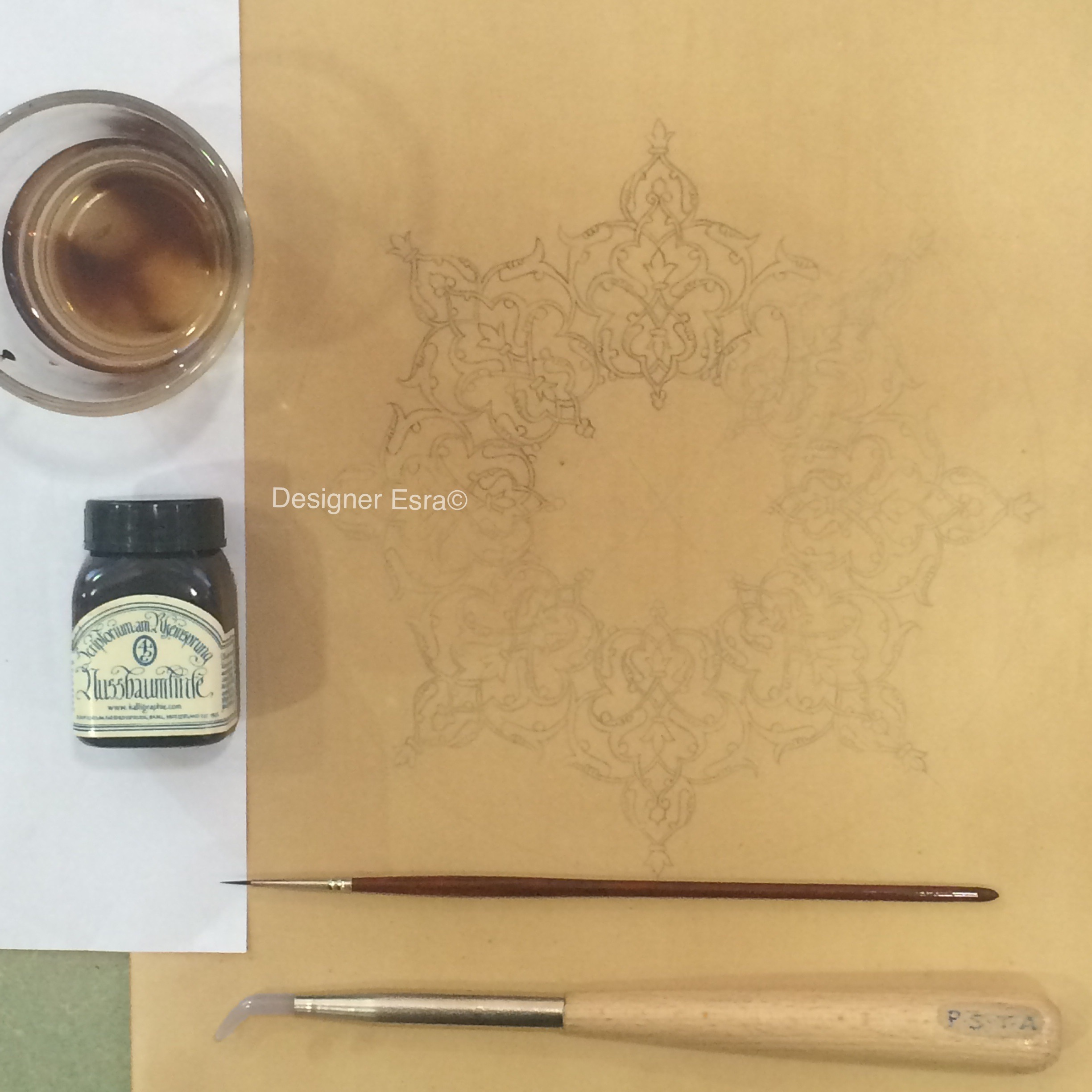 drawing with walnut ink