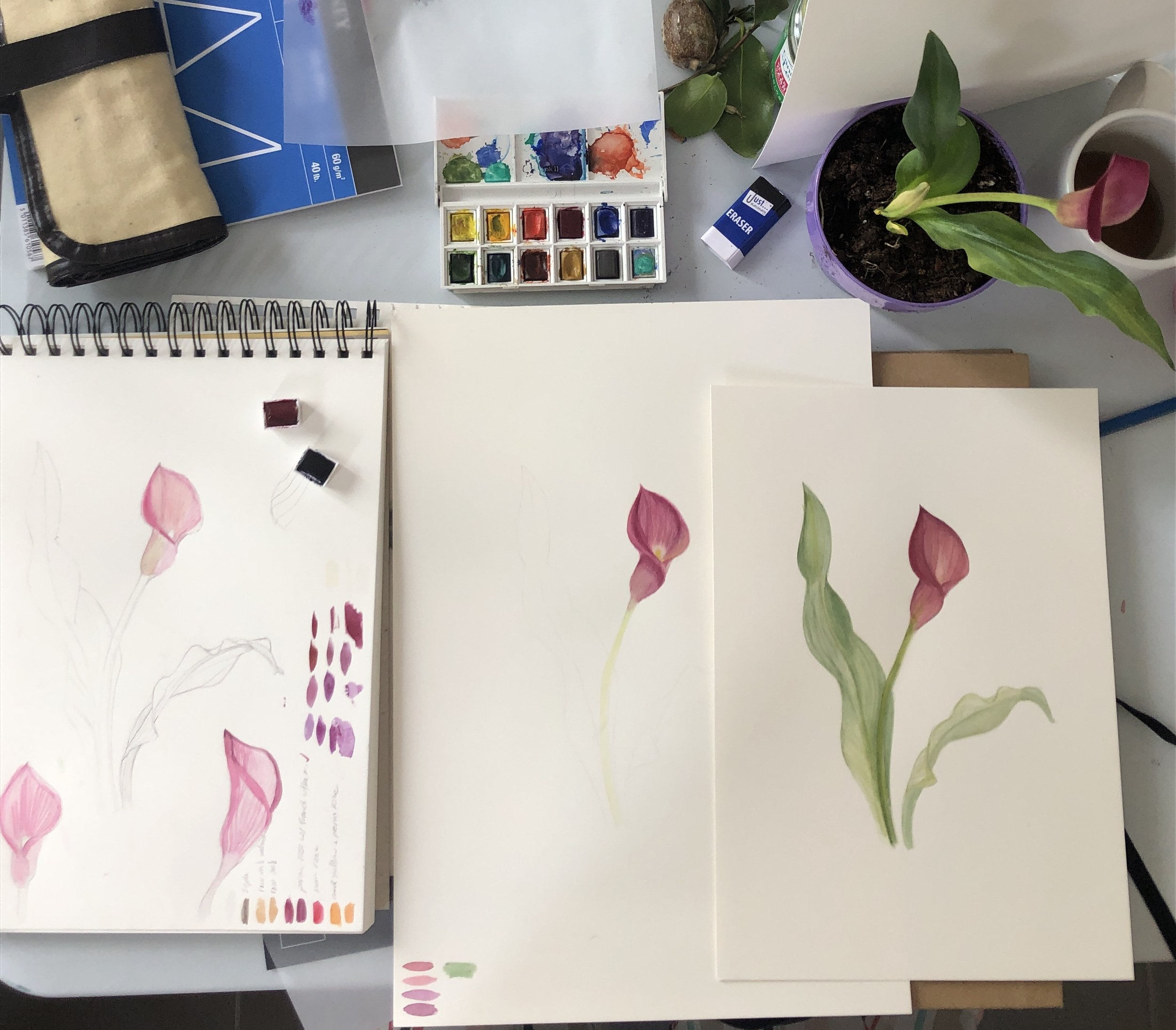 Botanical Painting