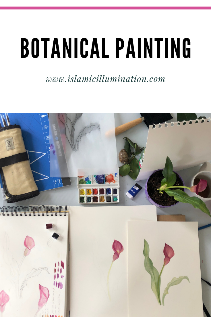 how to start with Botanical painting?