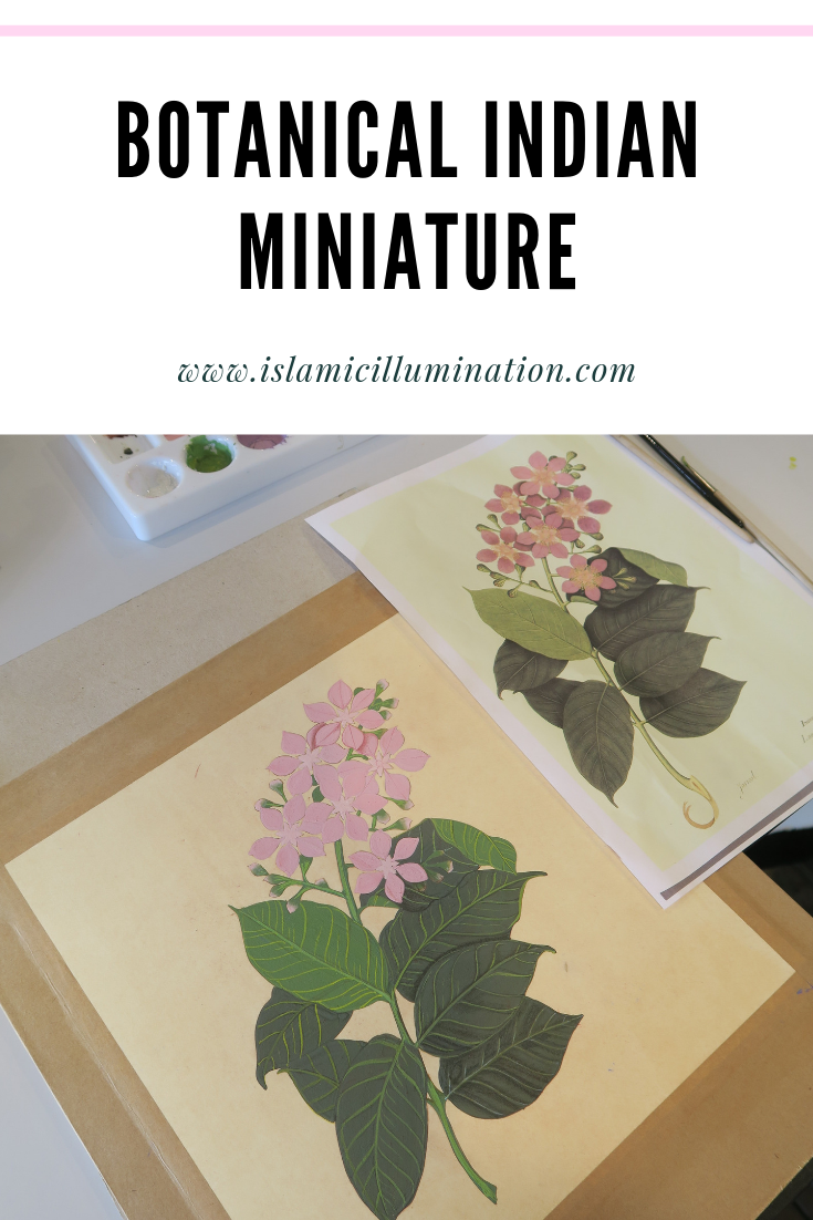 Botanical Indian Miniature