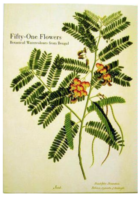 """Fifty-One Flowers, Botanical Watercolours from Bengal"" by William Chubb"