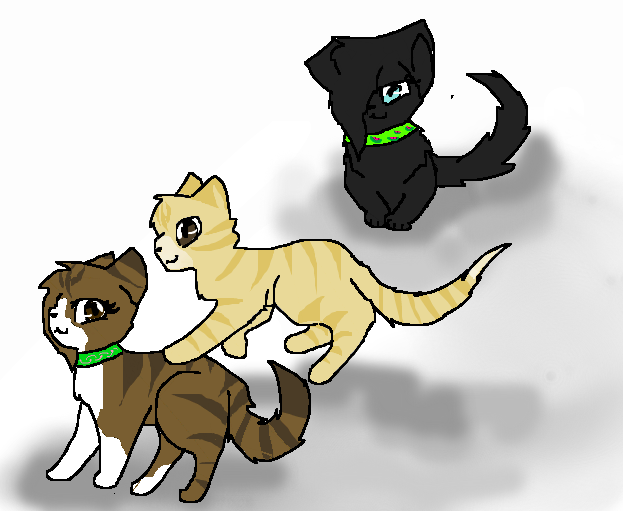 Toffee, Shortcake, and Clove!