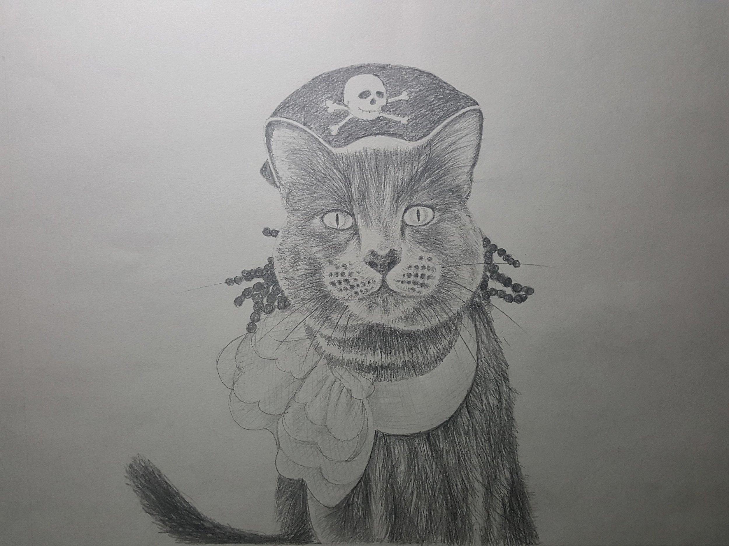 Pirate Ari by NivekArts
