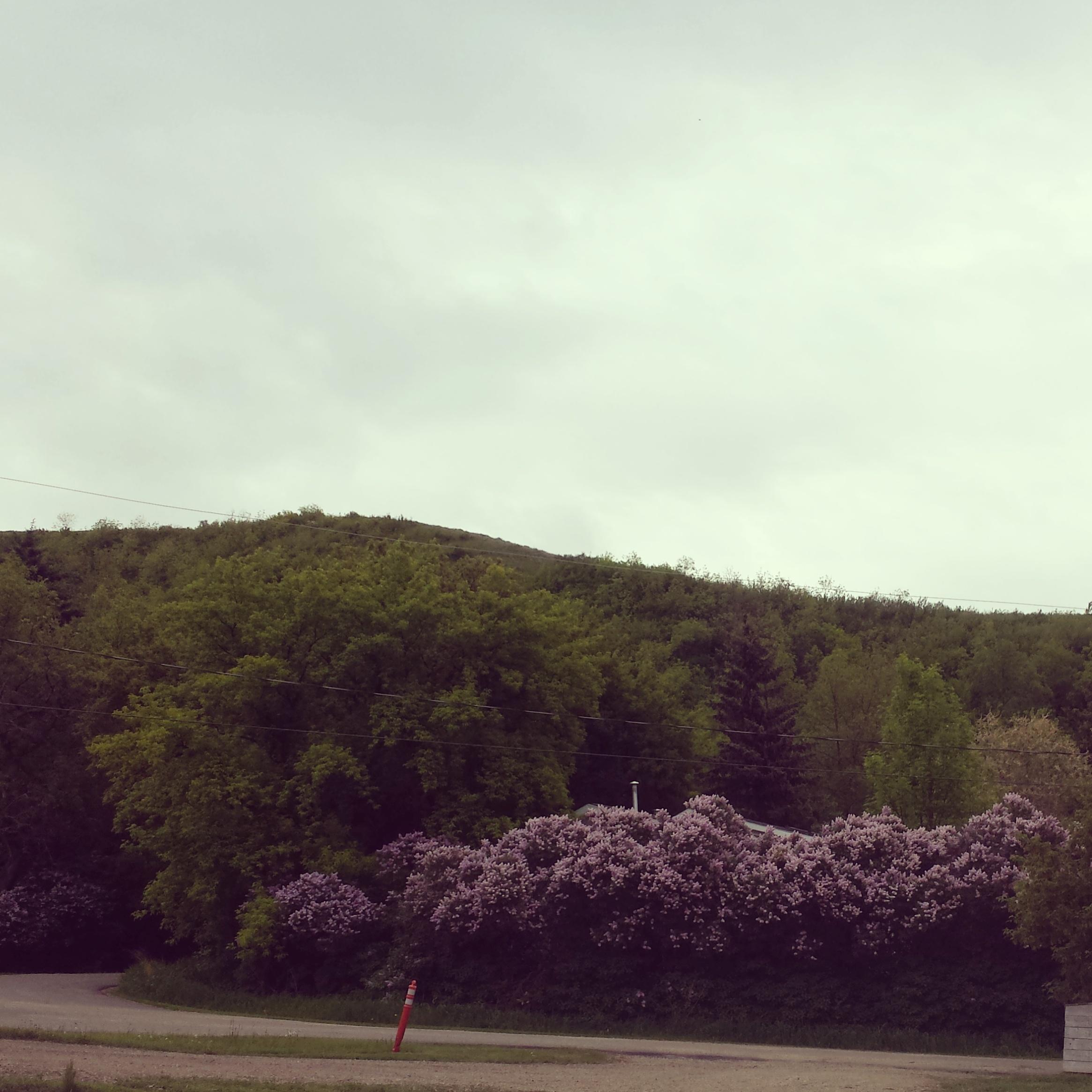 Fort Lilacs