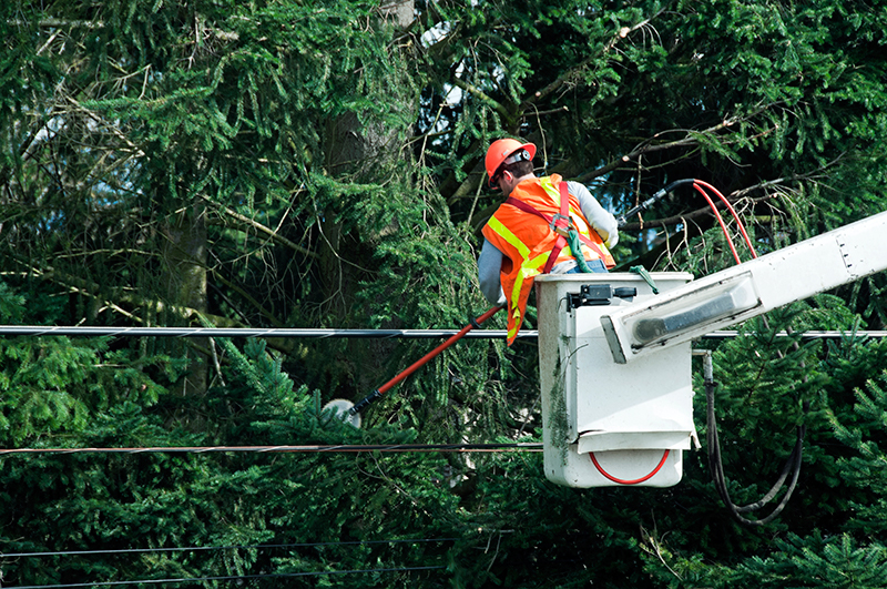 rectify intermittent overhead power line faults