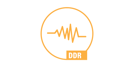 DYNAMIC DISTURBANCE RECORDING - DDR