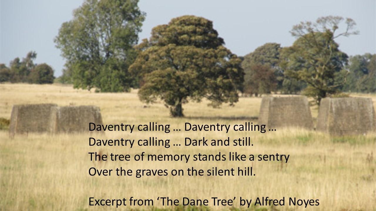 The Dane Tree.jpg