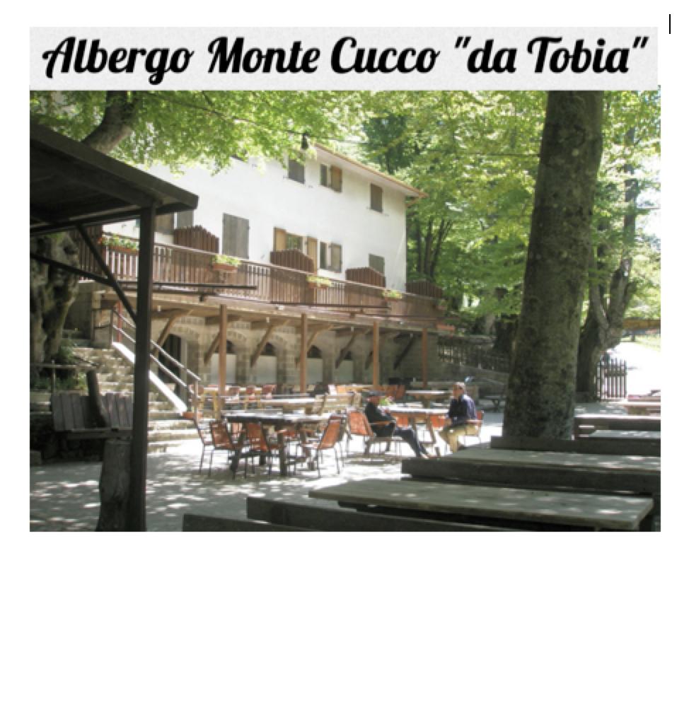 "ALBERGO RISTORANTEMONTE CUCCO""DA TOBIA"" - Loc. Val di Ranco - SIGILLO (Pg)Tel. +39 075.9177194 - +39 331.9718914www.albergomontecucco.it - albergomontecucco@gmail.com"