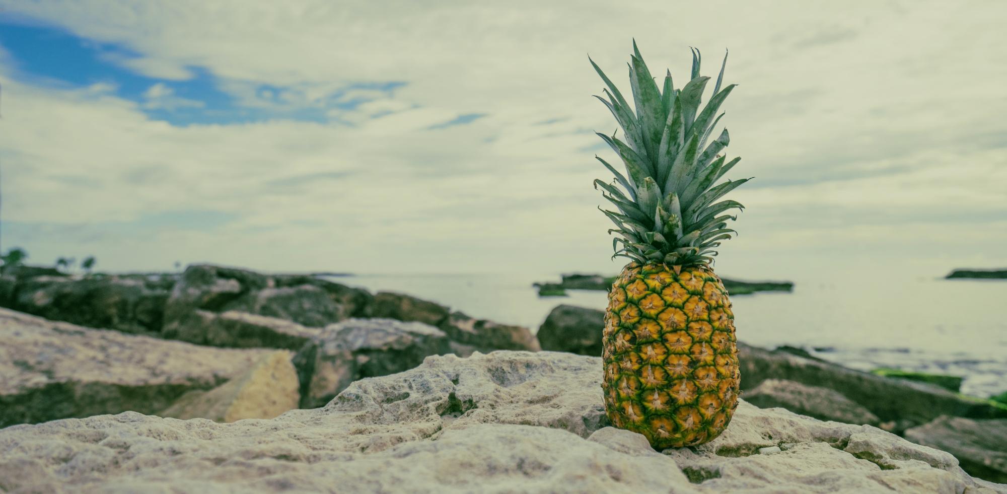 pineapple-header.jpg