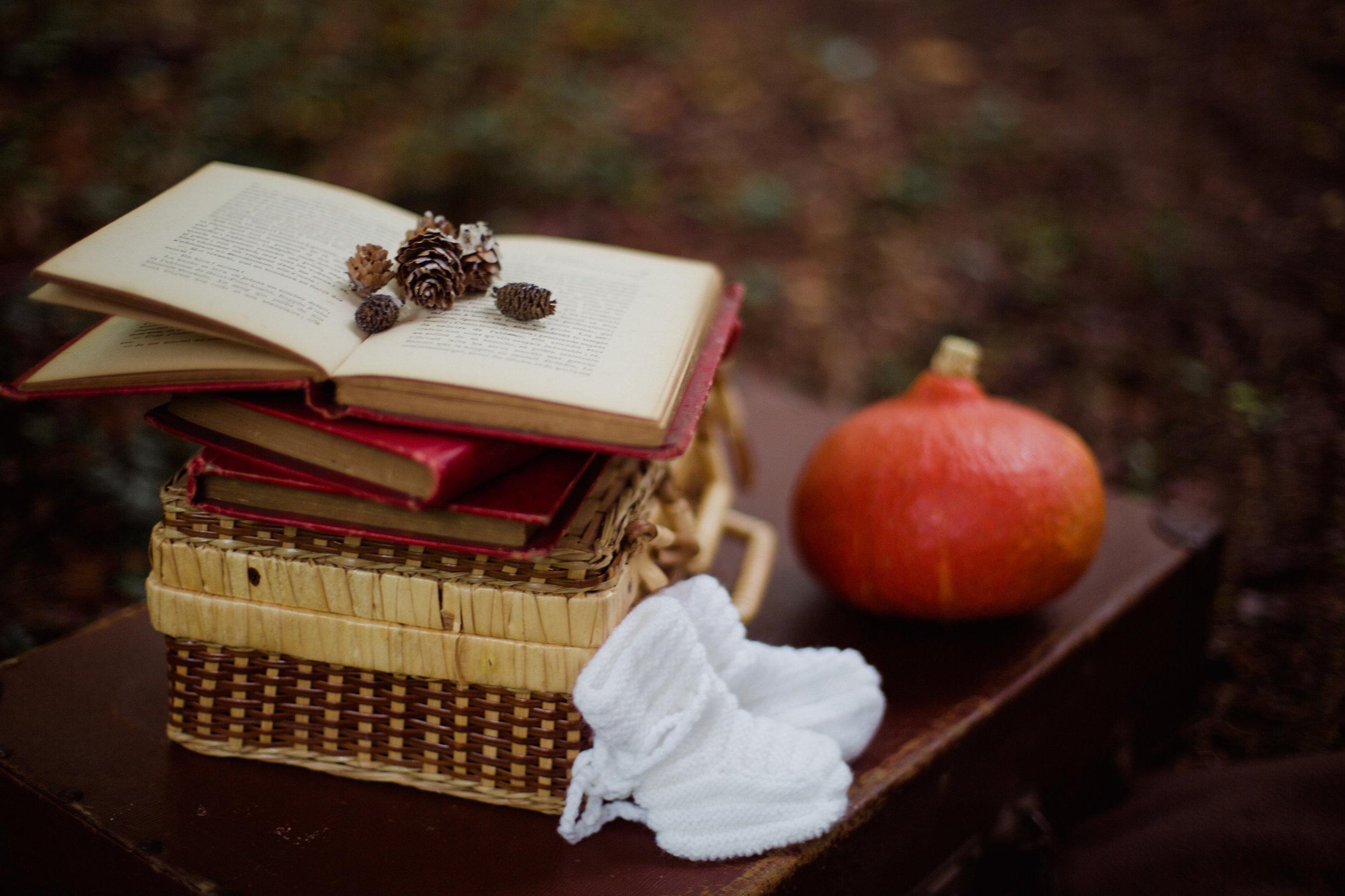 seance photo grossesse ventre rond foret Dordogne automne Photographe Pauline Maroussia P Bordeaux