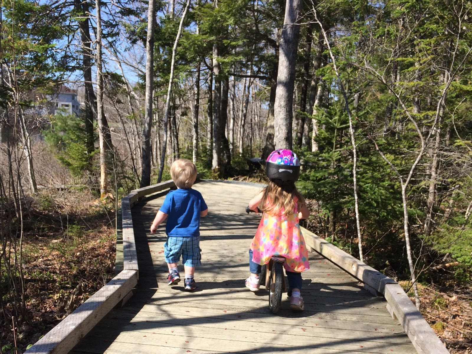 My little Haligonians enjoying the First Lake Trails