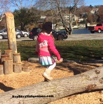 Giant tree as a balance beam