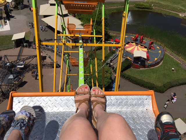 Getting the birds eye view of the park on the Ferris Wheel!