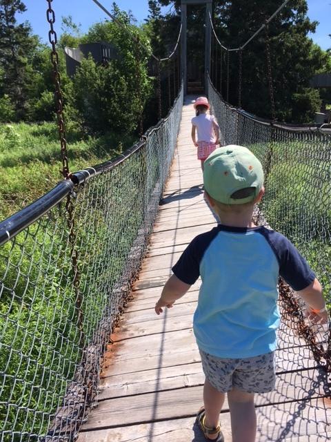 Crossing the Swinging Link