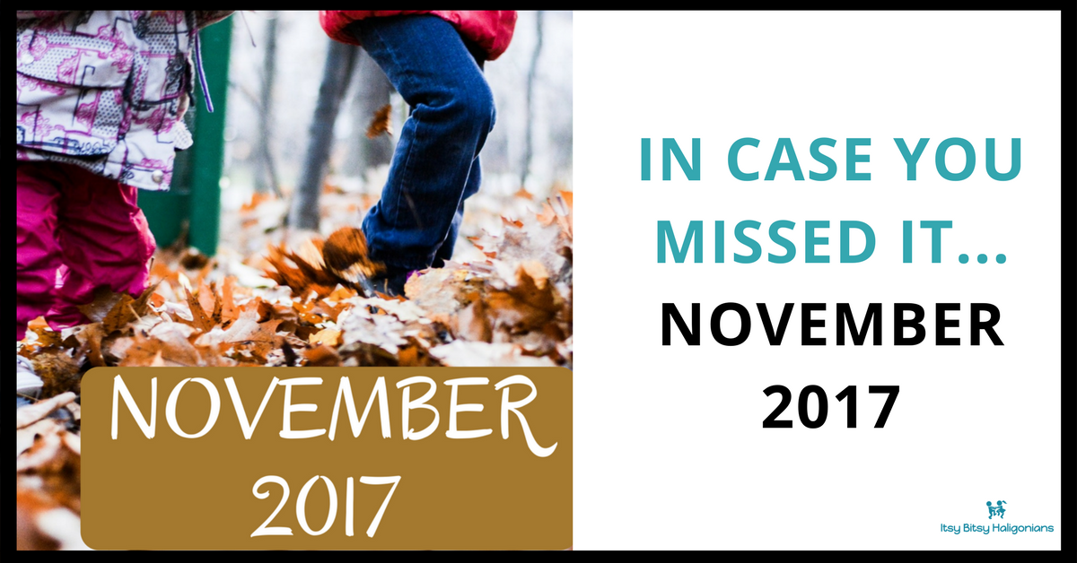 In Case You Missed It...November 2017 in Review (1).png