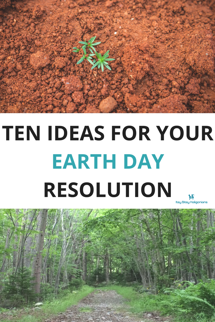 Ten ideas for your Earth Day Resolution