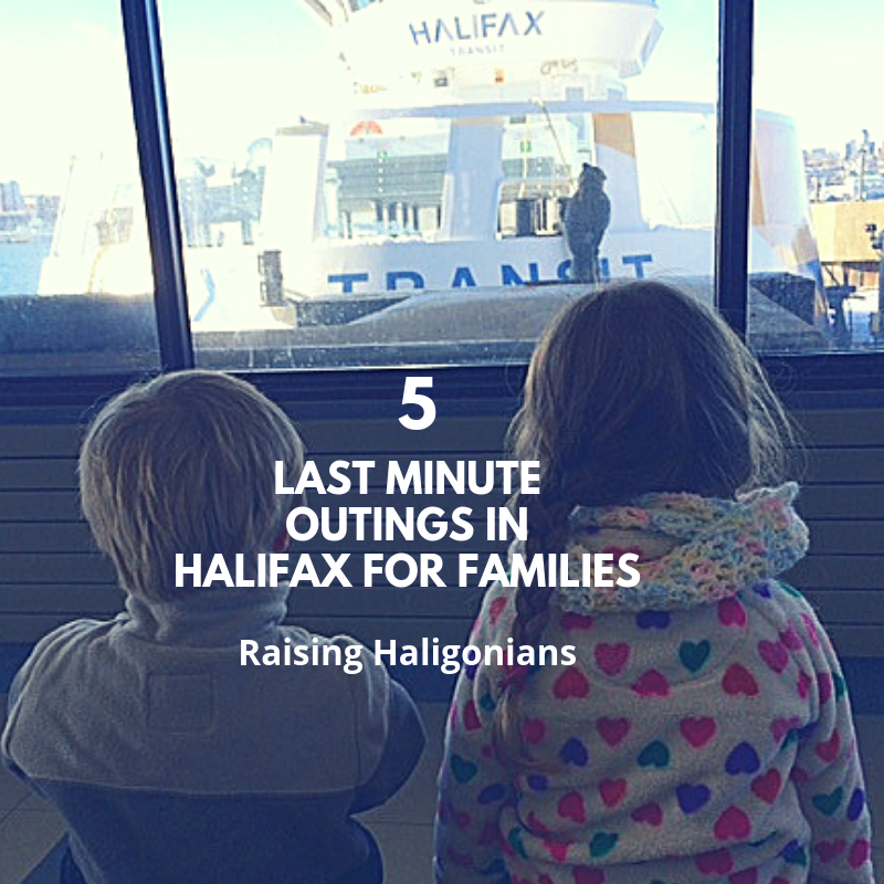 5 last minute outings for halifax families