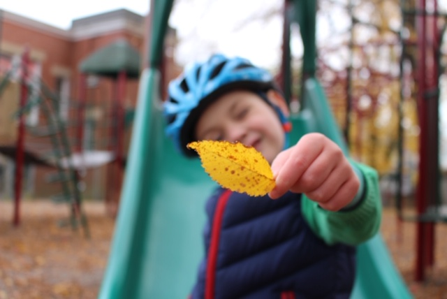 Playground fun:  Image courtesy of the Swain family