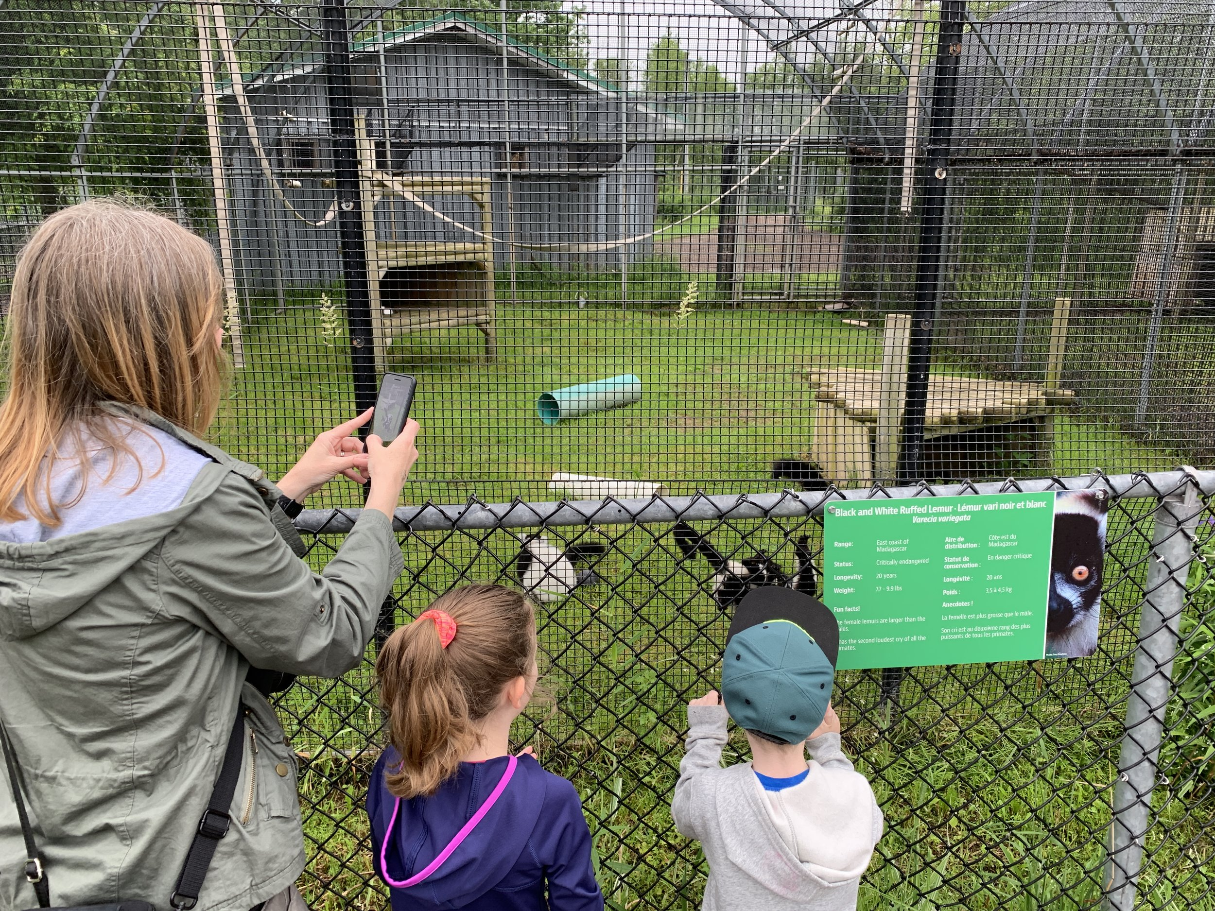 Magnetic Hill Zoo