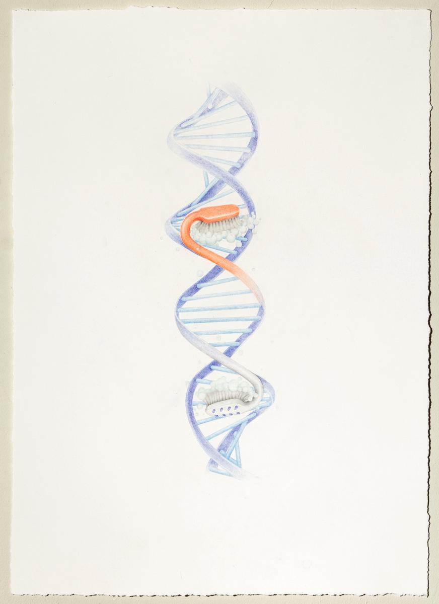 aurel_schmidt_gods_DNA-original.jpg