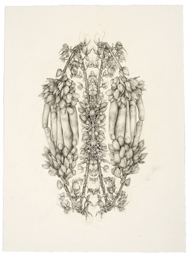 """""""Untitled ( Rorschach Flowers 1)"""" pencil, colored pencil on paper, 20.75"""" x 15"""", 2014"""