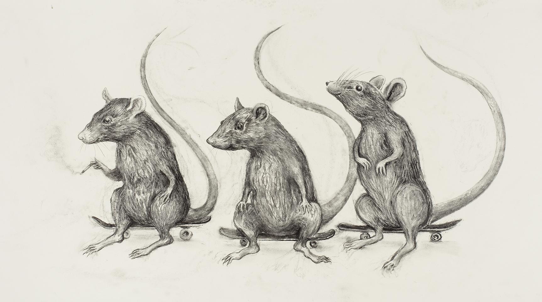 Skate Rats