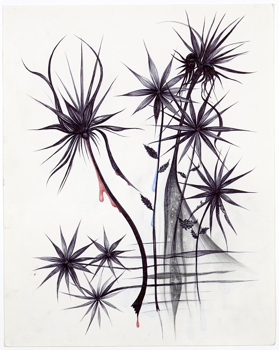 aurel_schmidt_self_harm_flowers_2.jpg