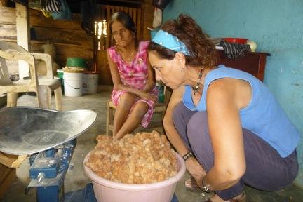 cotton Buying Mechoacan.jpg