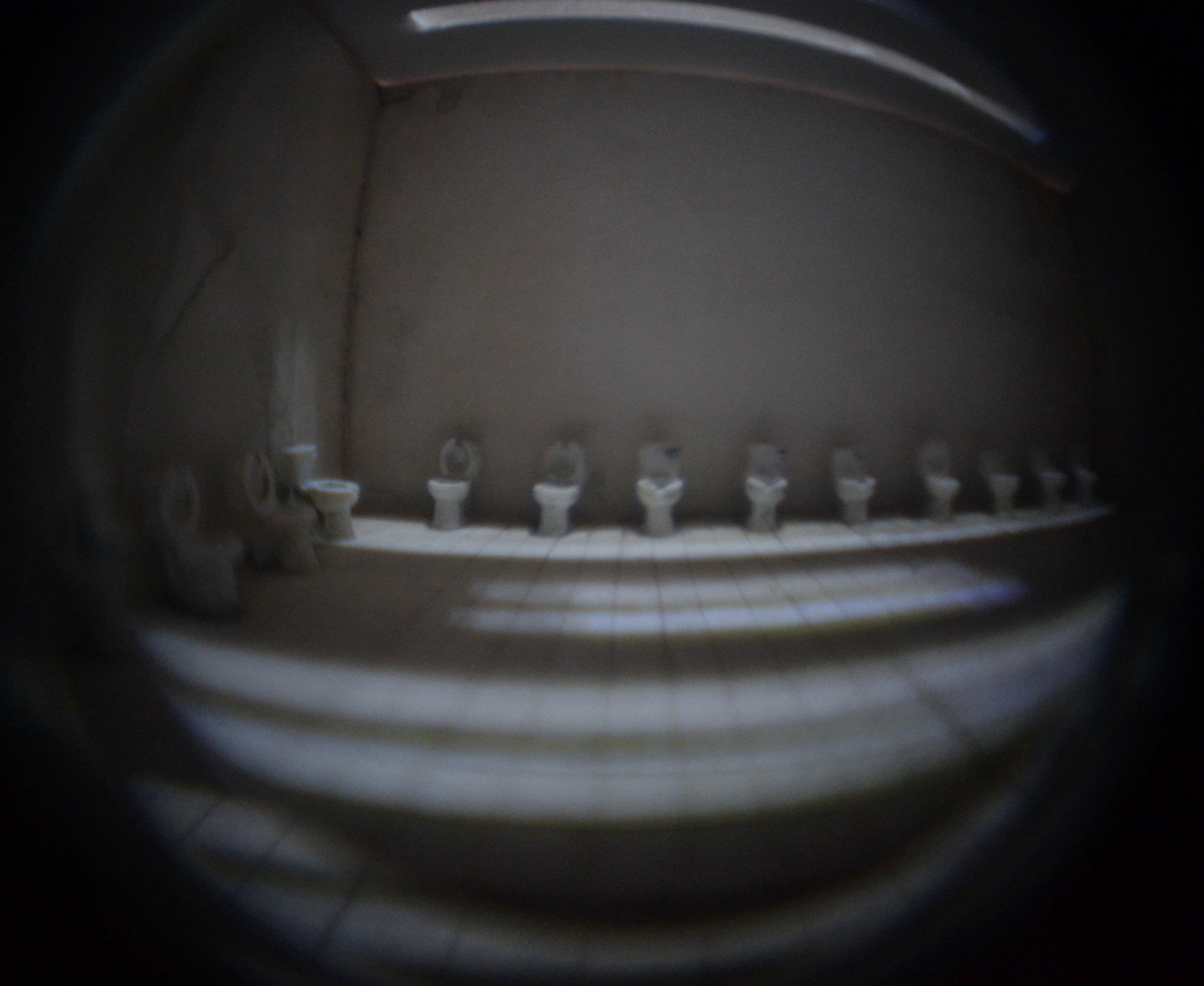 Nightmare Bathroom #1   (detail)
