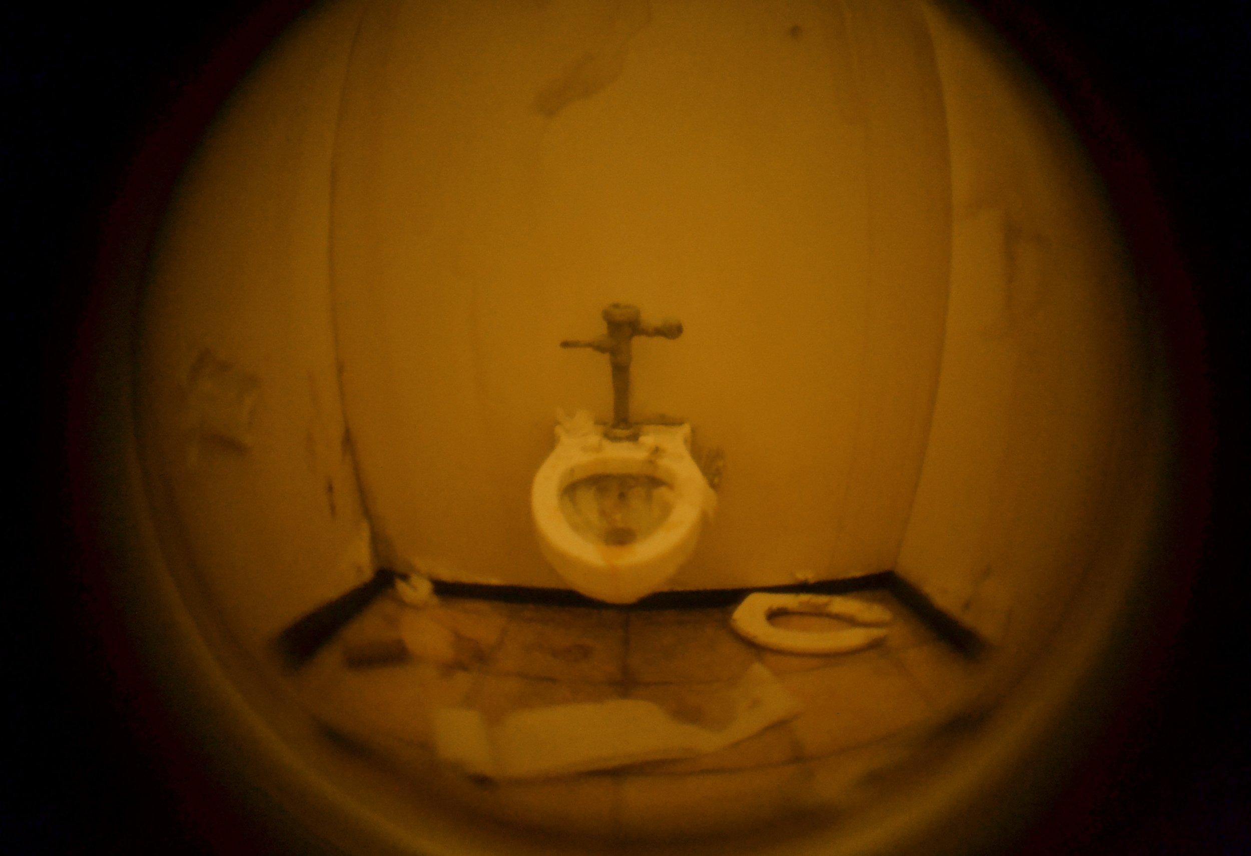 Nightmare Bathroom #2   (detail)